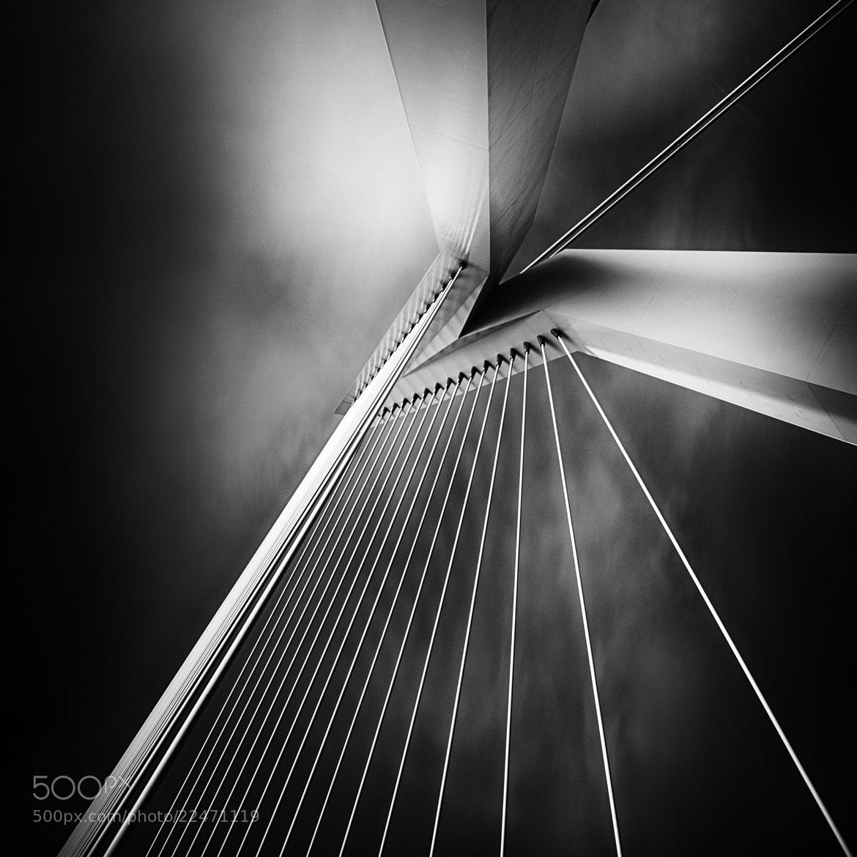 Photograph Rotterdam Erasmus Bridge by Frank van Haalen on 500px