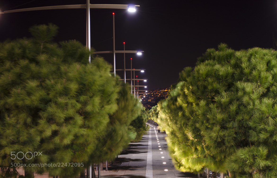 Photograph Path of lights by Alexis Ntounas on 500px