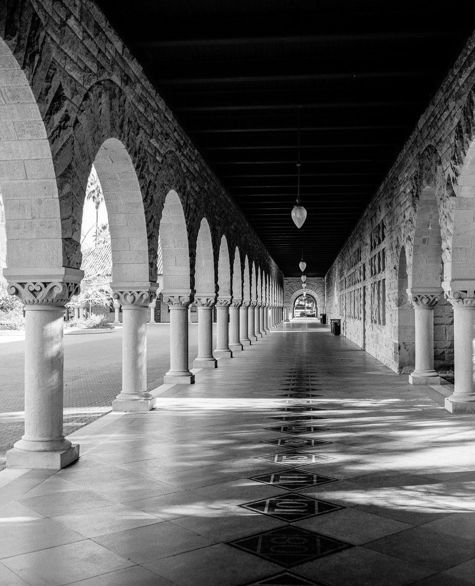 Photograph Stanford Campus by Miklos Szorenyi on 500px