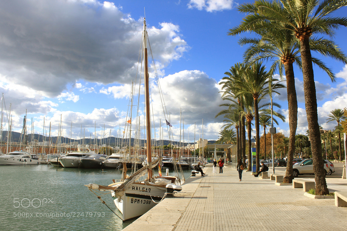 Photograph Palma de Mallorca Boardwalk by Majd Khaldi on 500px