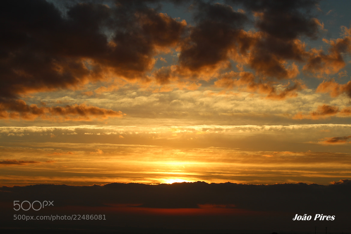 Photograph The Best Sunrise by João Pires on 500px