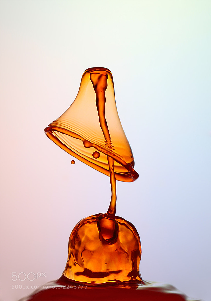 Photograph Table Lamp by Heinz Maier on 500px