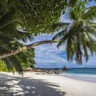 Paradise Beach On The Seychelles 4