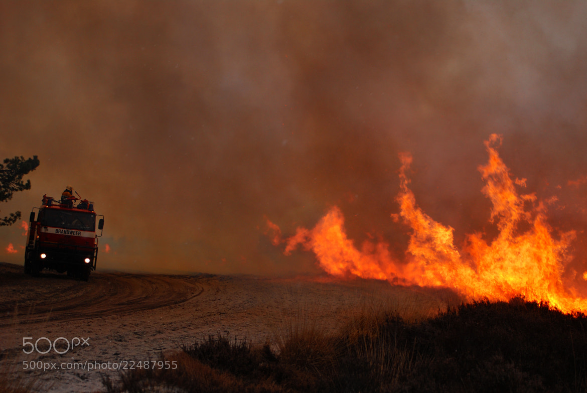 Photograph Burning Heathland by B Timmer on 500px
