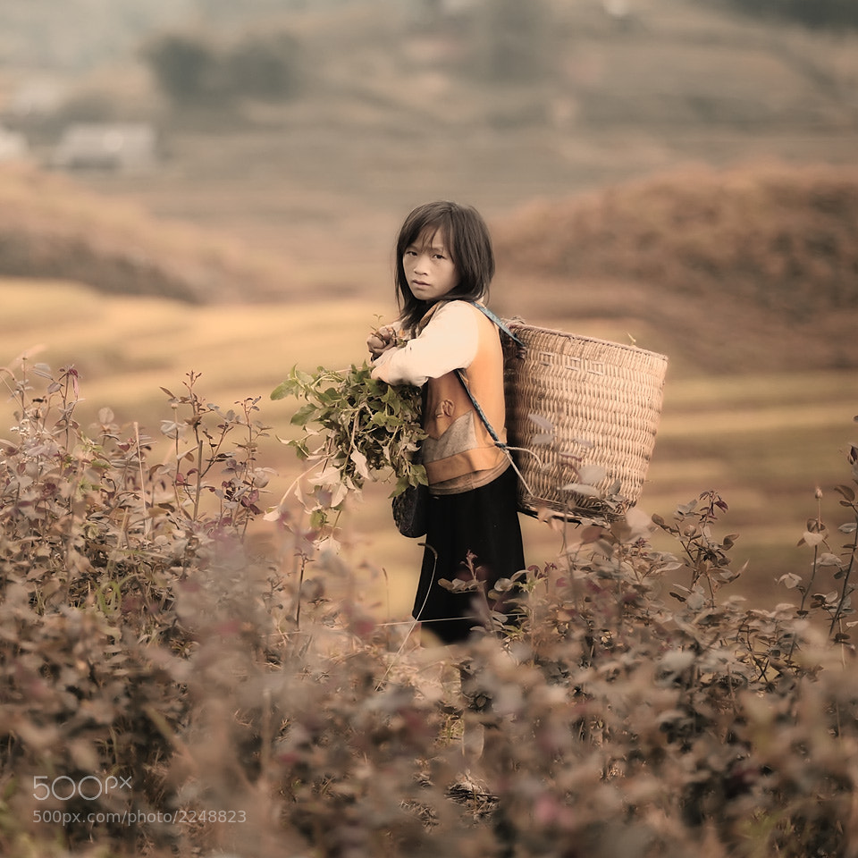 Photograph A Girl by Tonnaja Anan Charoenkal on 500px