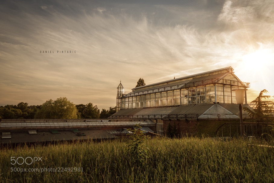 Photograph Botanischer Garten Berlin by Daniel Pintaric on 500px