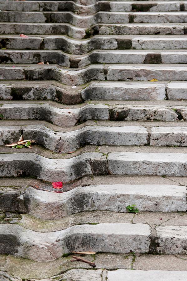`La rigole ( the gutter) de Christine Druesne sur 500px.com