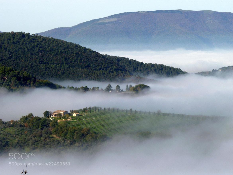 Photograph Fog! by MAURIZIO PONTINI on 500px