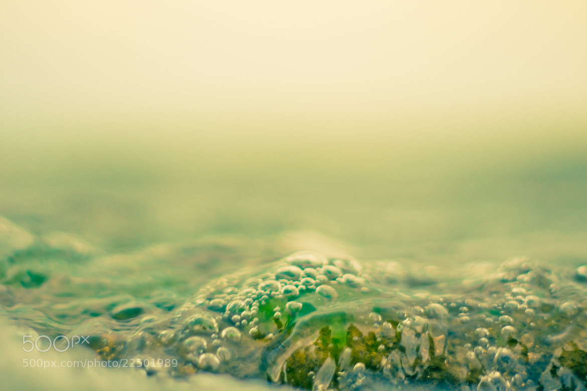 Photograph WATER STUDY by Suzanne Clements on 500px