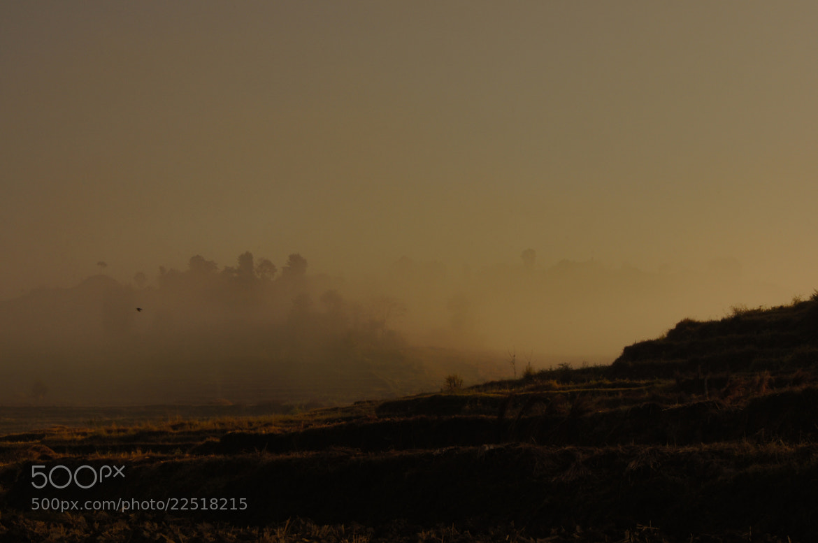 Photograph Mystery Misty by Afzal Khan on 500px