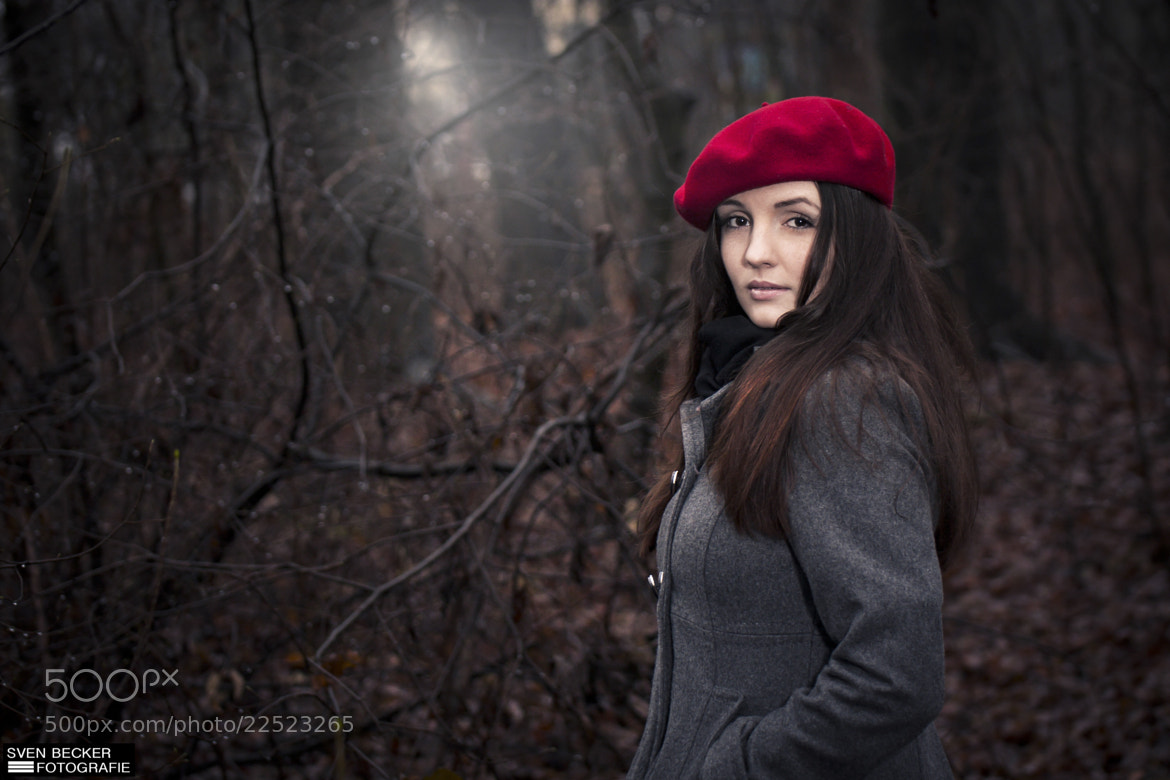 Photograph in the forest v2 by Sven Becker on 500px