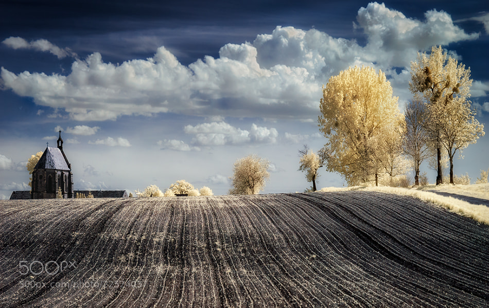 Photograph IRenkowo by Piotr Krol on 500px