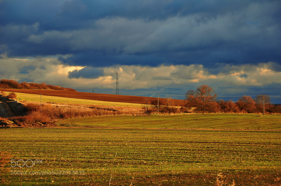 Photograph Arable land by János Kovács on 500px