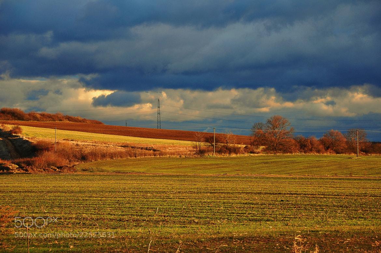 Photograph Arable land by János Kovács on 500px