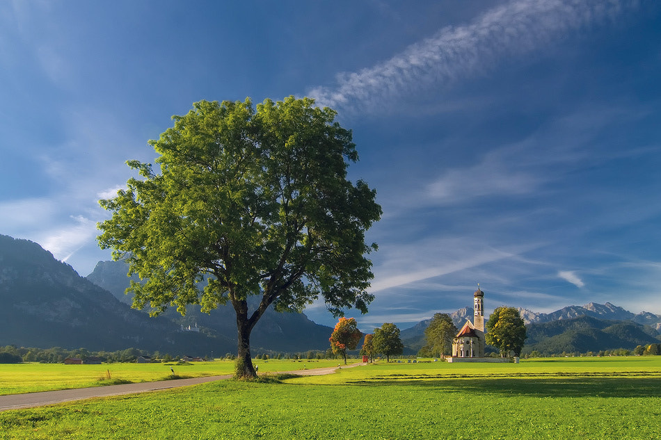 Photograph Bavarian etude by Dmytro Balkhovitin on 500px