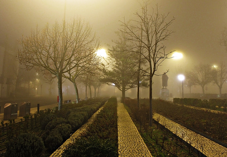 Photograph Foggy night by Graciete Pedroso on 500px