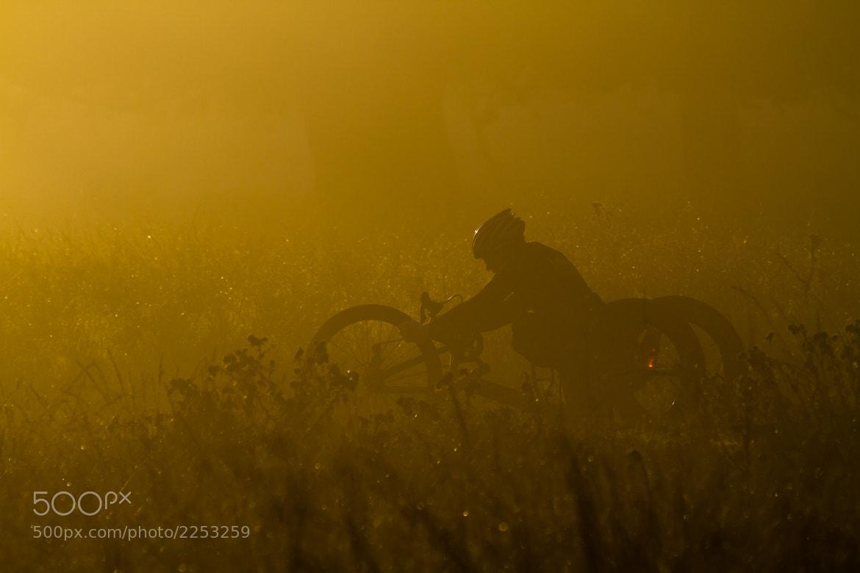 Photograph Ride through the Fog by Steve Bryson on 500px
