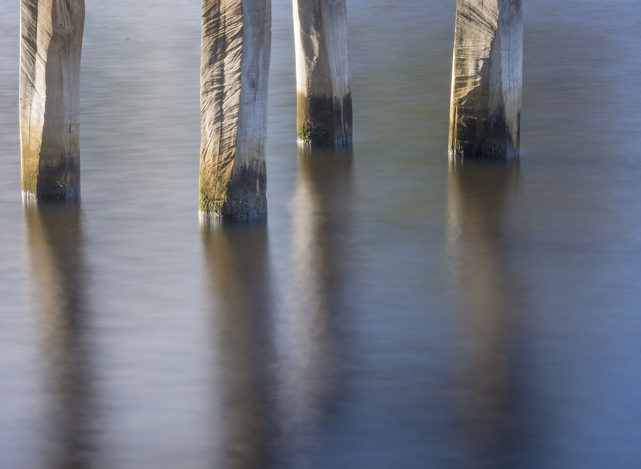 Photograph Pier Posts by Reza Marzooghi on 500px