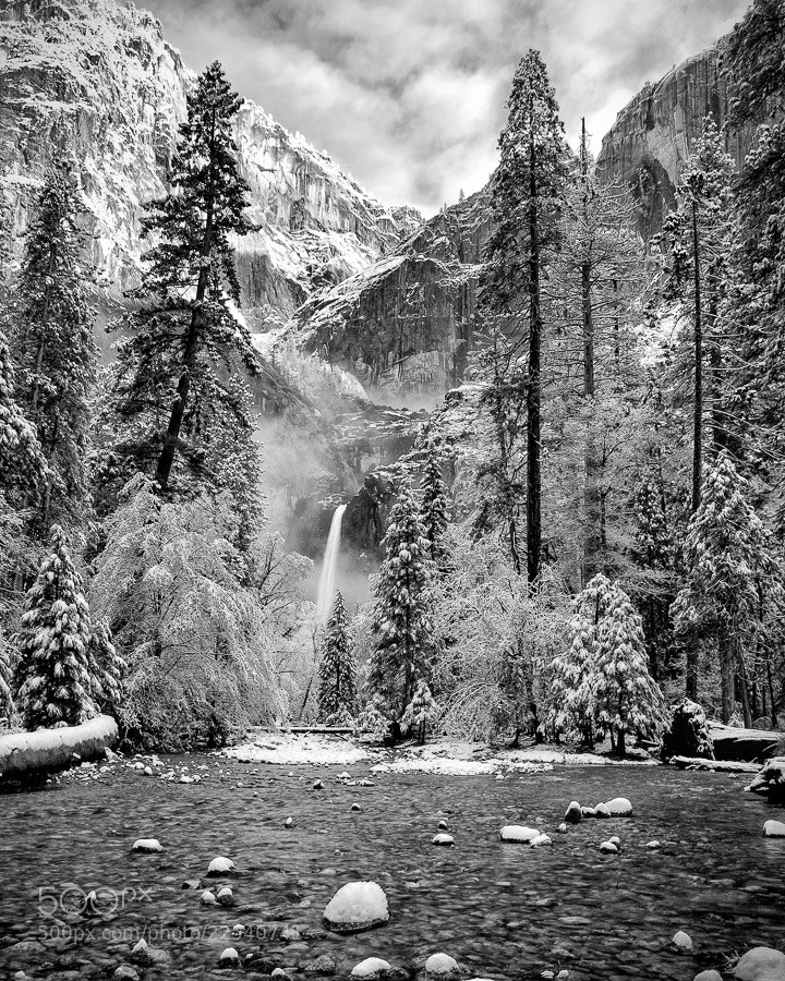 Photograph Yosemite Sping by Malcolm Kahn on 500px