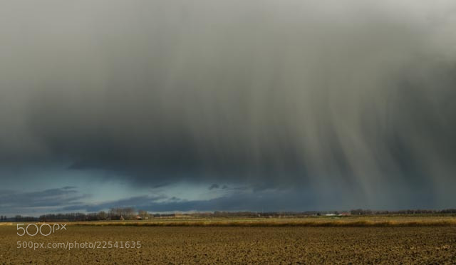Photograph Rain by Wim Mulder on 500px
