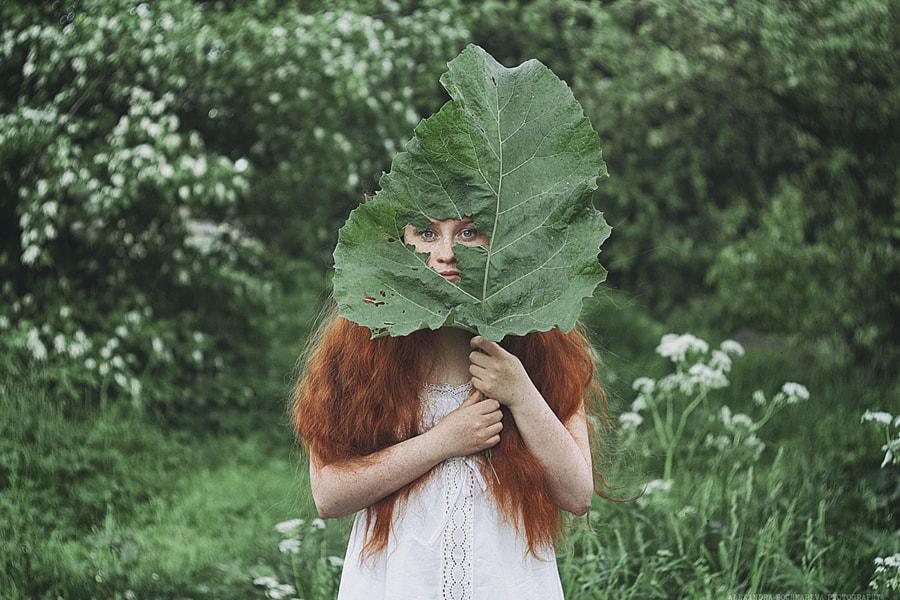Hide and Seek: 5, 4, 3, 2, 1 by Alexandra Bochkareva on 500px.com