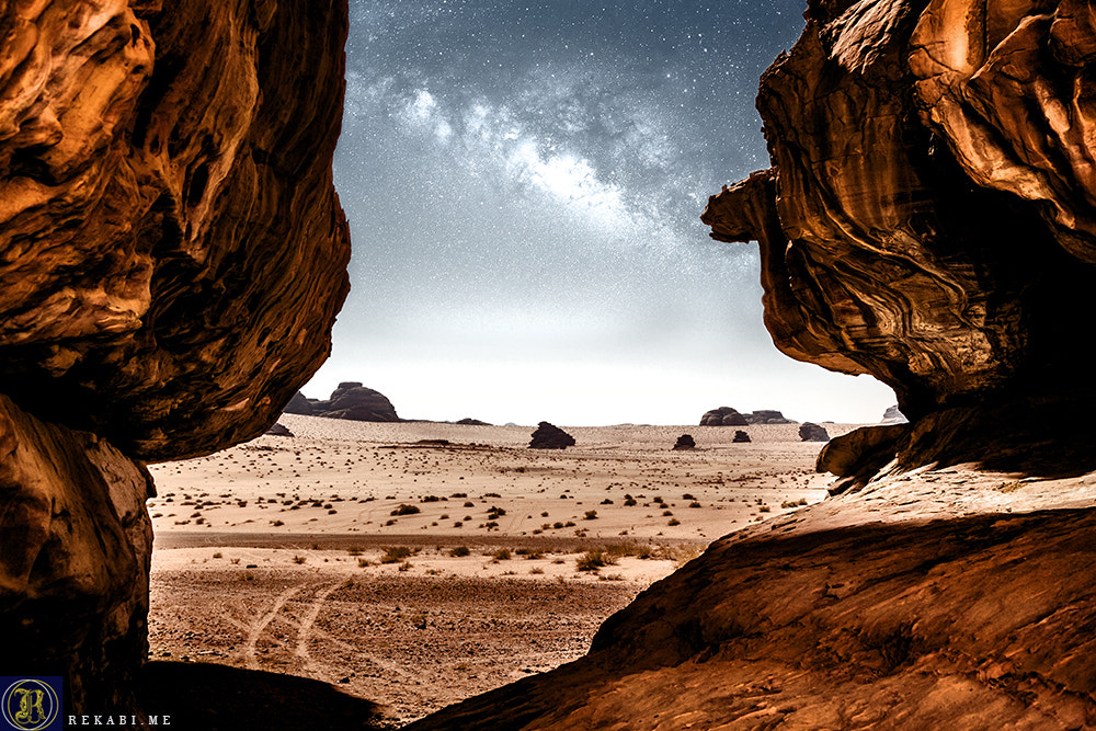 Photograph Guardian of the Desert by Ali Al Rekabi on 500px