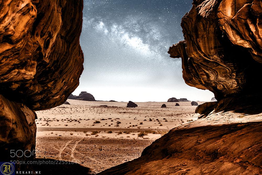 Photograph Guardian of the Desert by Ali Al Rekabi on 500px