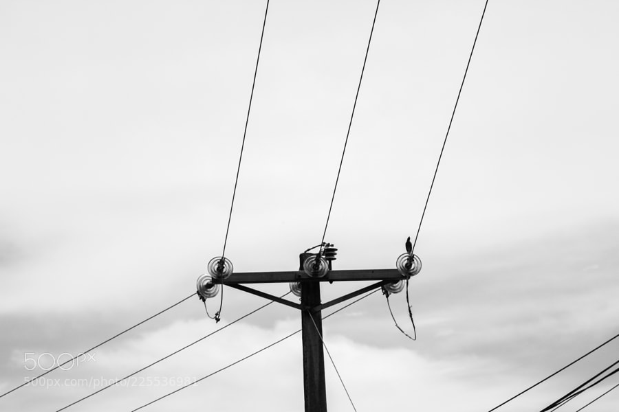 An Electricity Pole