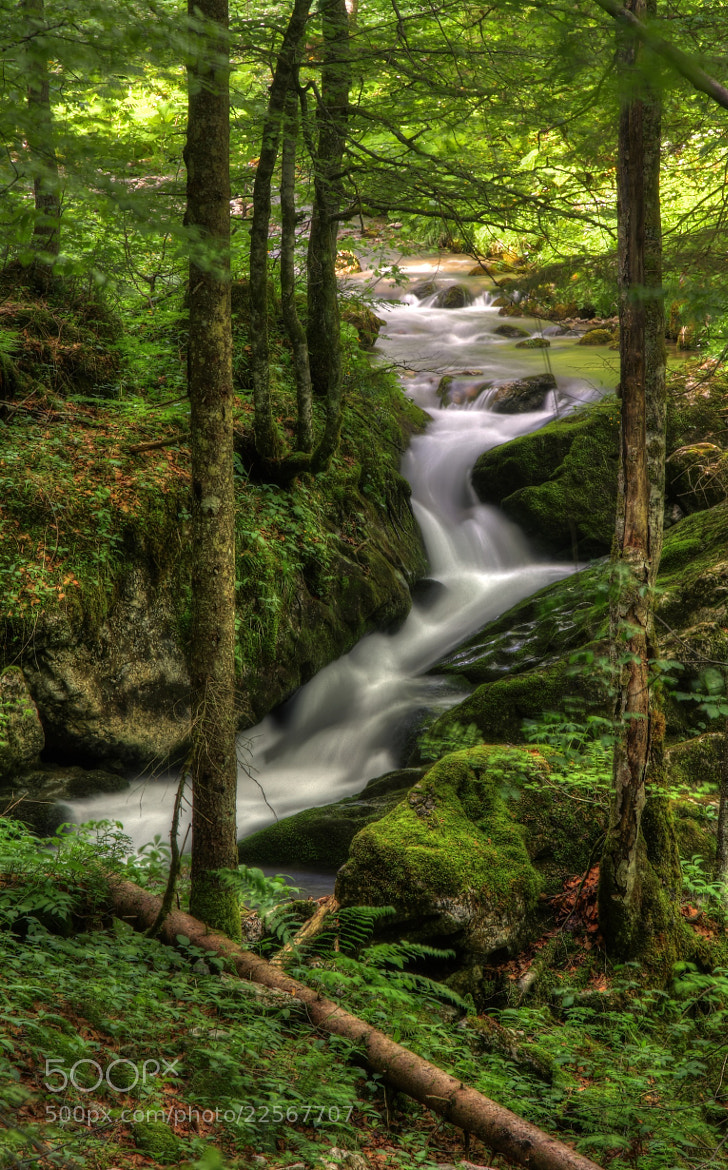 Photograph Creek by Christian Schweizer on 500px