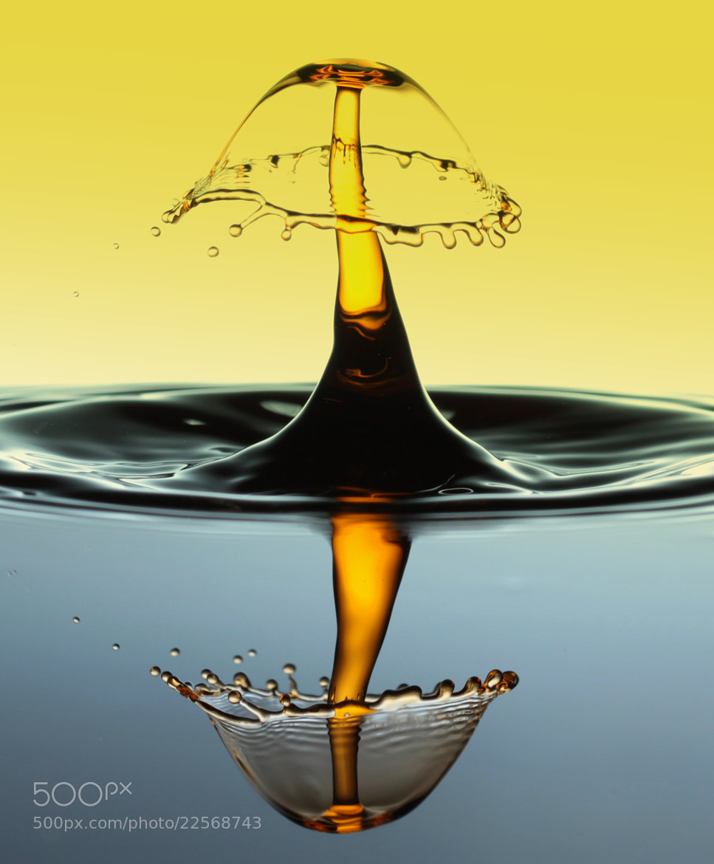 Photograph Just a drop by Mukerrem Misirlioglu on 500px