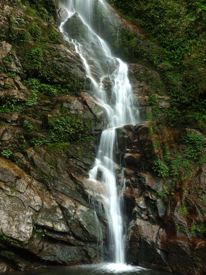 Rimbi Falls - Pelling