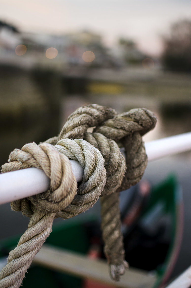 Photograph Knot by Diana Martins on 500px