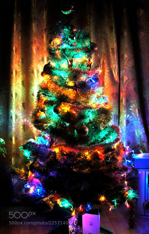 Photograph Home Christmas Tree by Oleg Chu on 500px