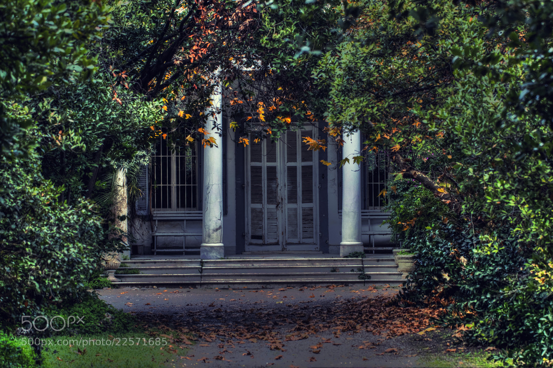 Photograph Untitled by Oğuz Kölemen on 500px