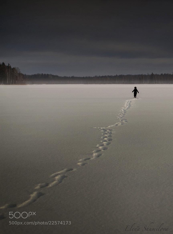 Photograph Snow steps... by Elena Shumilova on 500px