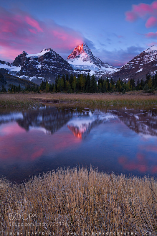 Photograph Assiniboine by Koveh Tavakkol on 500px