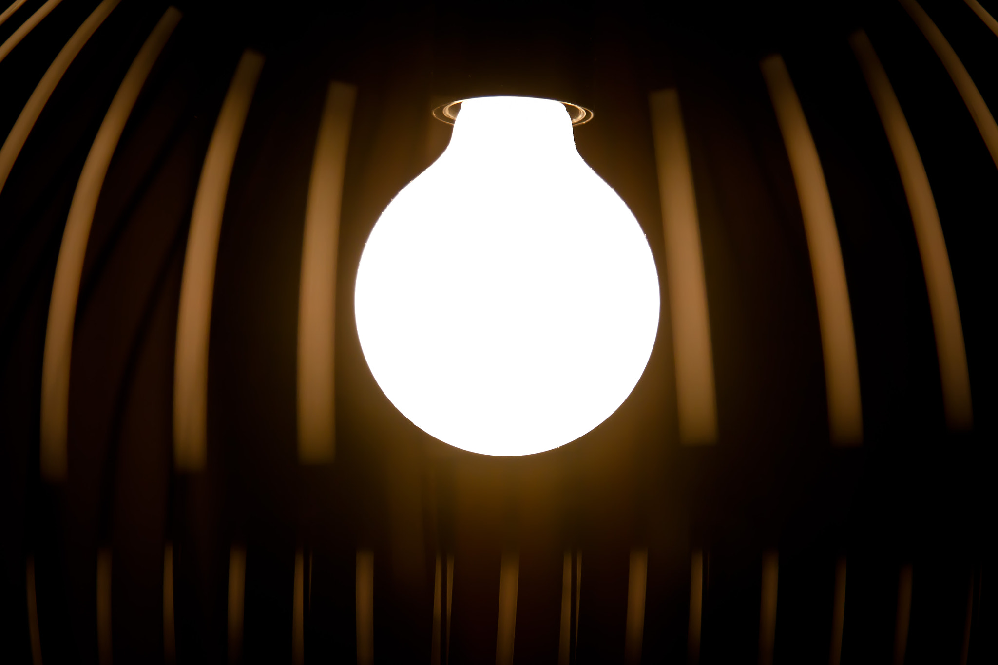 Photograph Bulb by Jacob Ussing on 500px