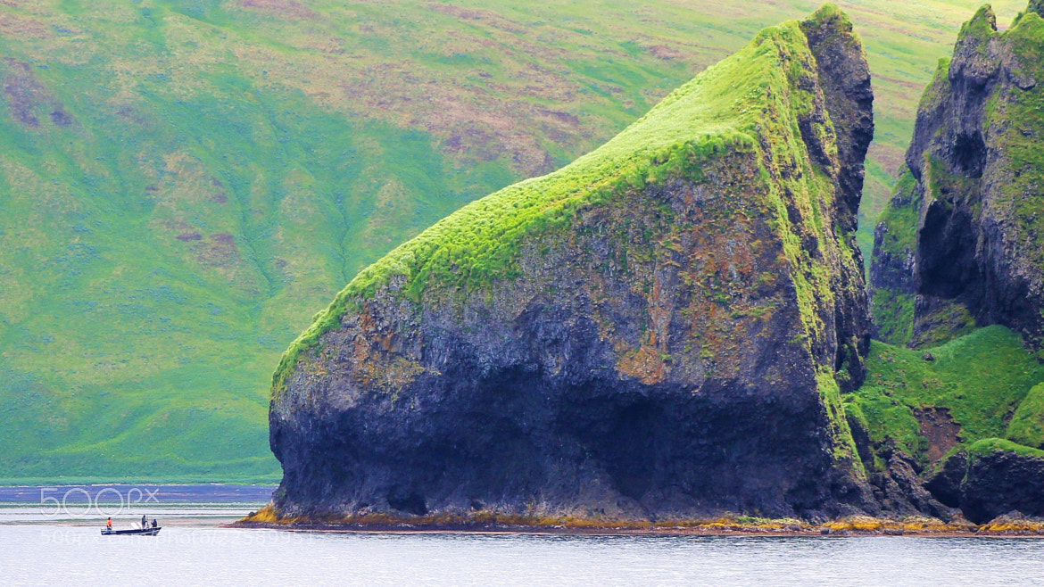 Photograph Turtle Head, Akutan Island, Aleutian Islands, Alaska by Jack Molan on 500px