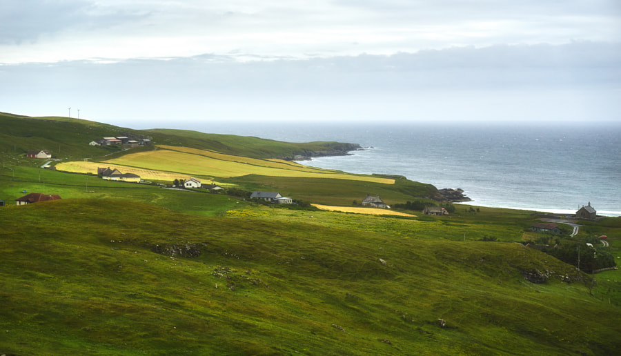 The Shetland II