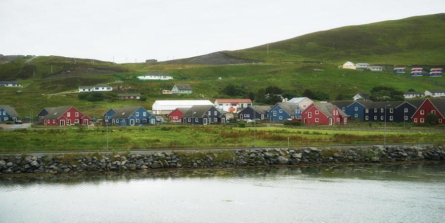 The Shetland IV
