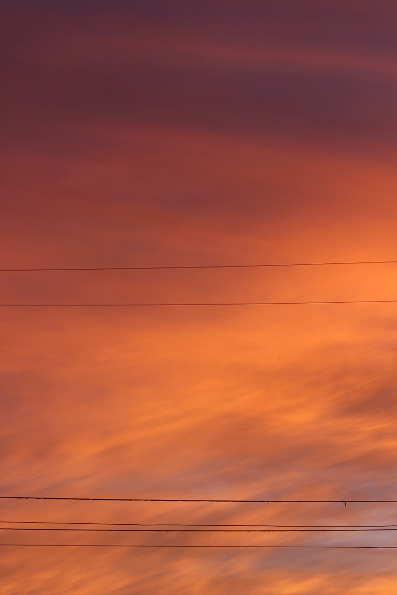 Photograph Colors of the sky by Stephanie Michelsen on 500px