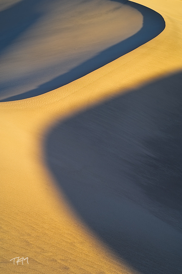 Photograph Big Dune Path by Kent Mearig on 500px