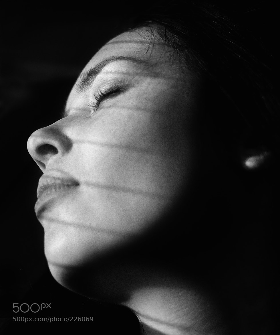 Photograph Untitled by Andrey Sharov on 500px
