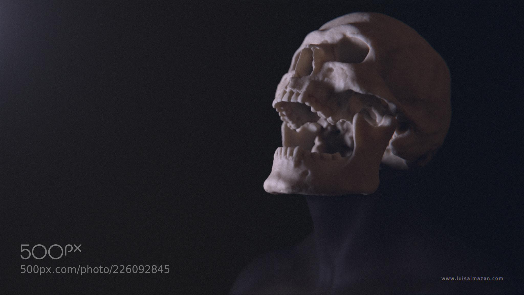 skull Yayauhqui comp v002