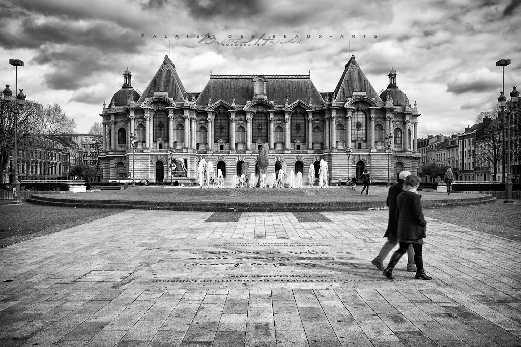 Photograph Palais des beaux-arts by Bastien HAJDUK on 500px