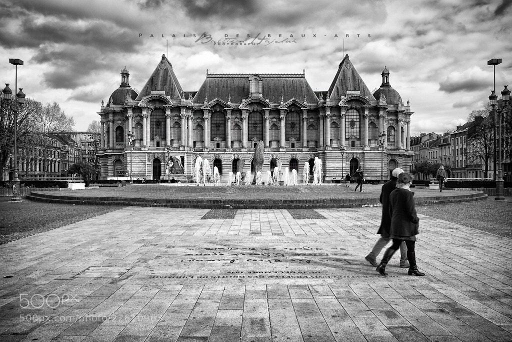 Photograph Palais des beaux-arts by Bastien HAJDUK on 500px
