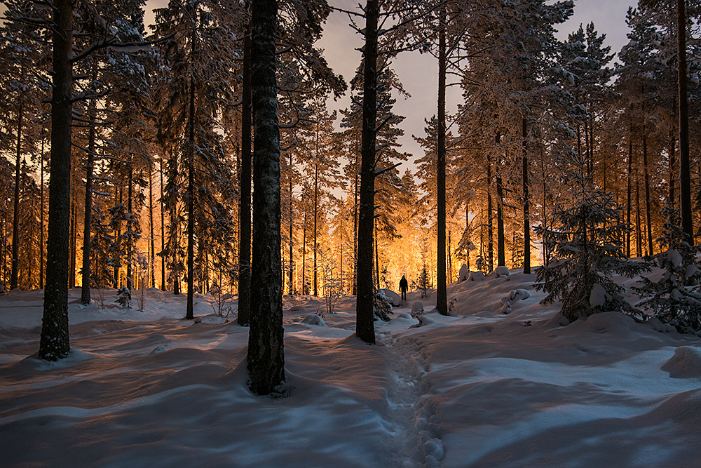 Photograph Between two worlds by Mikko Lagerstedt on 500px