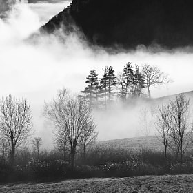 Winter by Bastien HAJDUK (Troudd)) on 500px.com