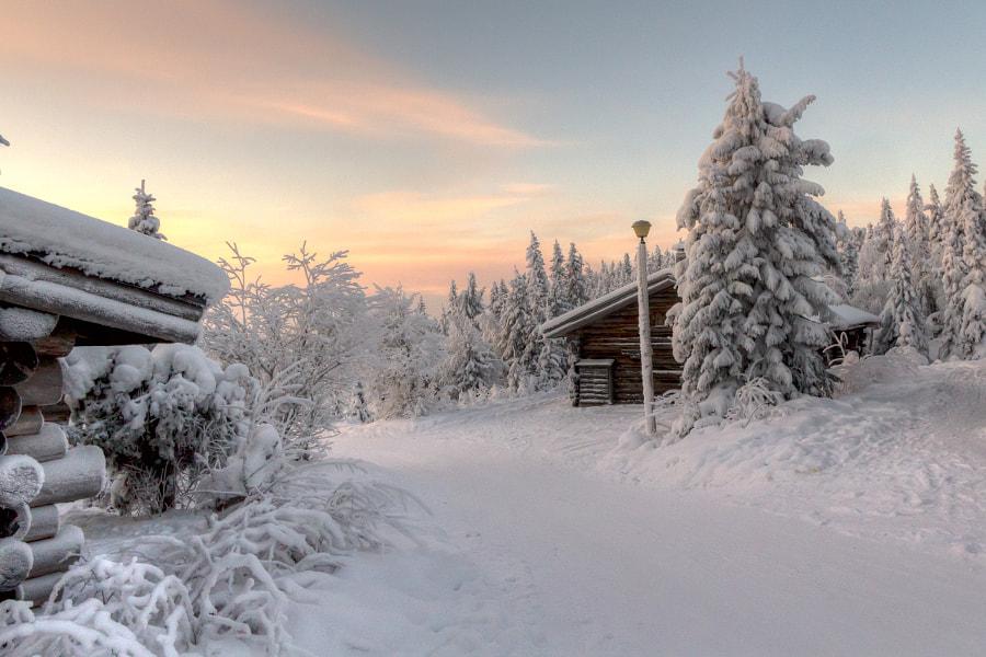 Winter wonderland, Iso-Syöte, Pudasjärvi, Finland, автор — Pasi Lepola на 500px.com