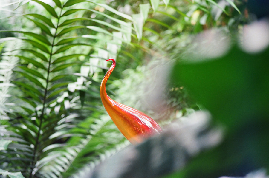 A red-orange glass sculpture, resembling a crane, peeks out from behind a lush, leafy landscape.